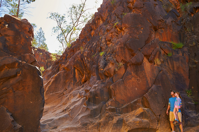 Sacred Canyon - Yura Mulka (2 hr)