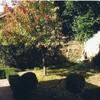 Gatehouse on Ryrie