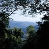Mt Glorious Getaways