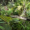 The Botanical Ark Retreat