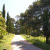 Newry Park Cottage - North West Tasmania near Wynyard & Boat Harbour