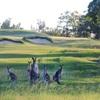 Riverside Oaks Golf Resort