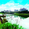 Mission Hills Resort - Haikou