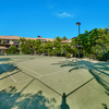 Blue Sky Apartments at Turtle Beach Resort