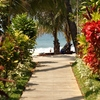 Bayview - the beach resort